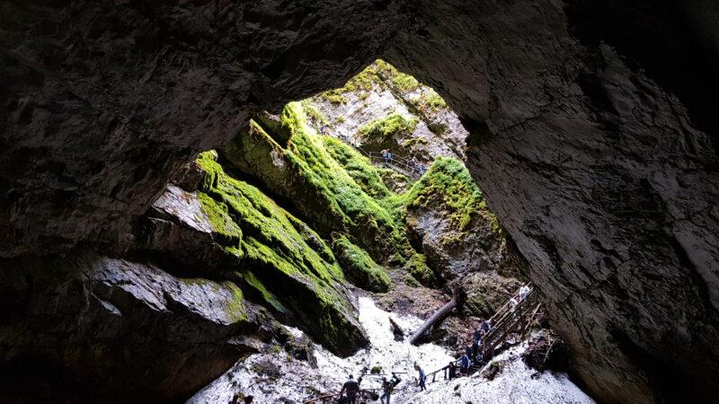 Peșteri de top – Peştera Scărişoara