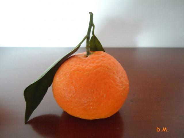 Așteptare portocalie