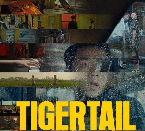 Tigertail: O poveste de viață