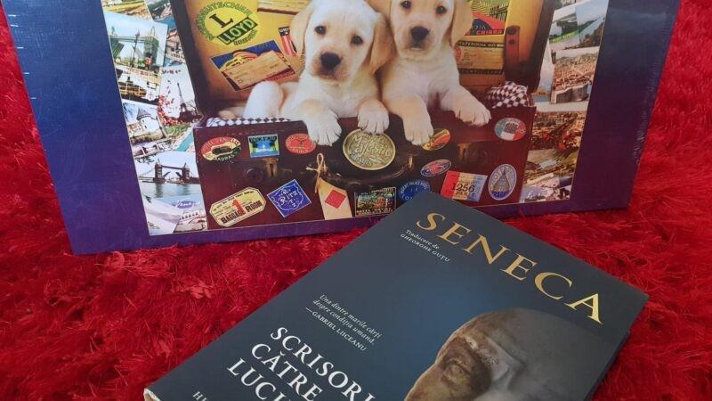 Cum să faci și să alegi cuiva un cadou potrivit
