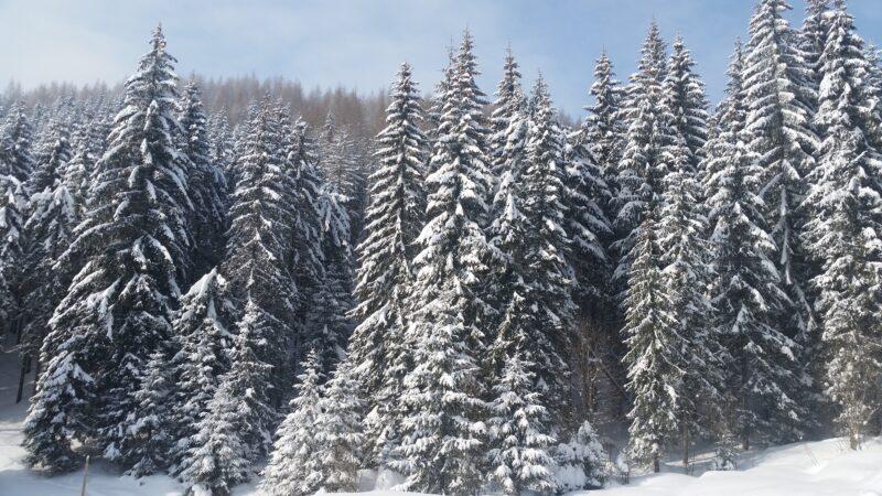 Unde să mai petreci iarna asta