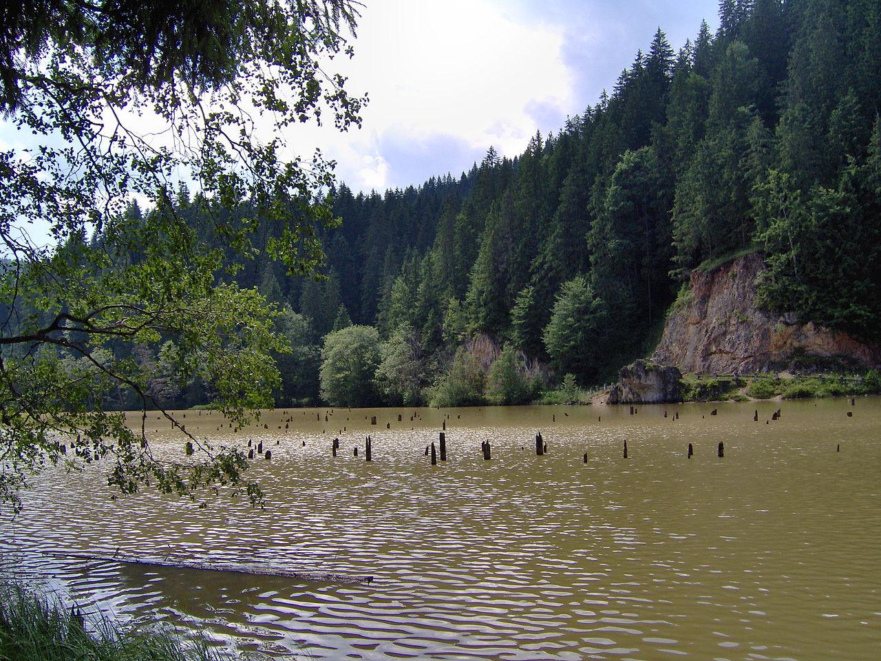 Lacul Roșu și cel mai bun langoș😉