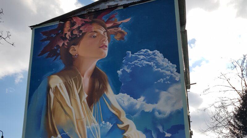 Picturile murale din Bacău